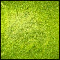 Lemongrass, 15ml Jar, Primary Elements Arte-Pigment