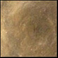 Warm Gray, 30ml Jar, Primary Elements Arte-Pigment